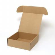 HEIKO 箱 ナチュラルボックス Z-22 プレート皿6枚用 10枚